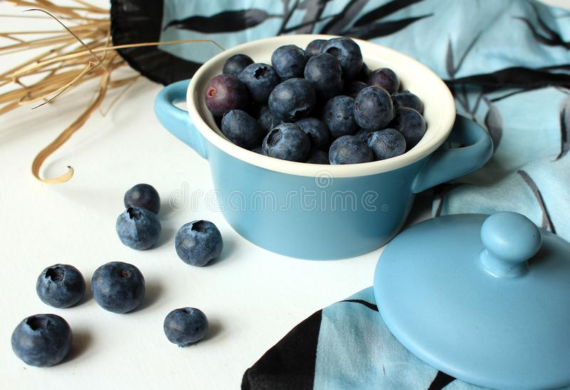 Still life - blueberries in a blue bowl with lid and blue and black scarf. Blueberries in a blue bowl with lid and blue and black silky scarf royalty free stock photography