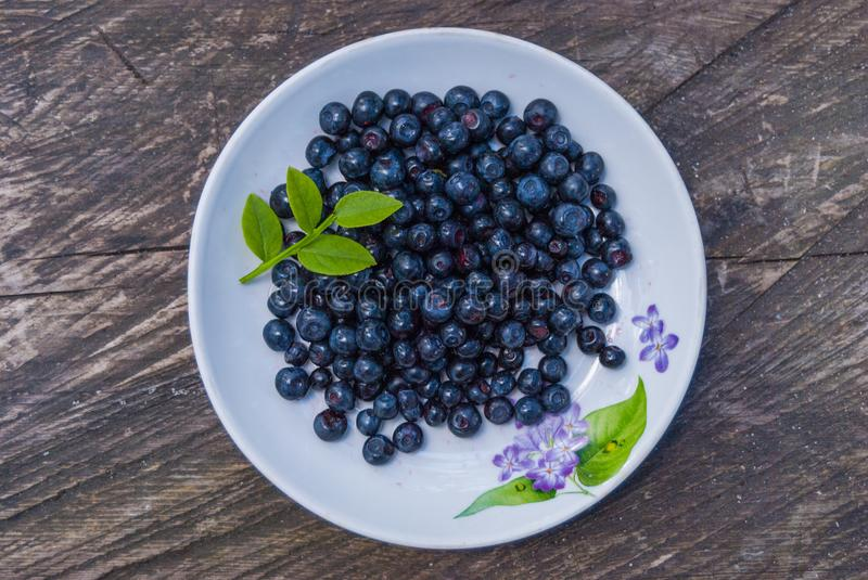 Still life of blueberries on a white plate table of rough boards royalty free stock photos