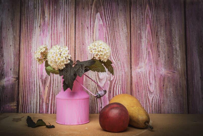 Still life- branch ninebark and pear royalty free stock photo