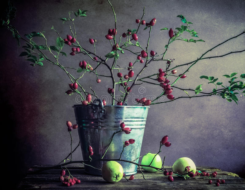 Still Life branches hawthorn apples stock photo