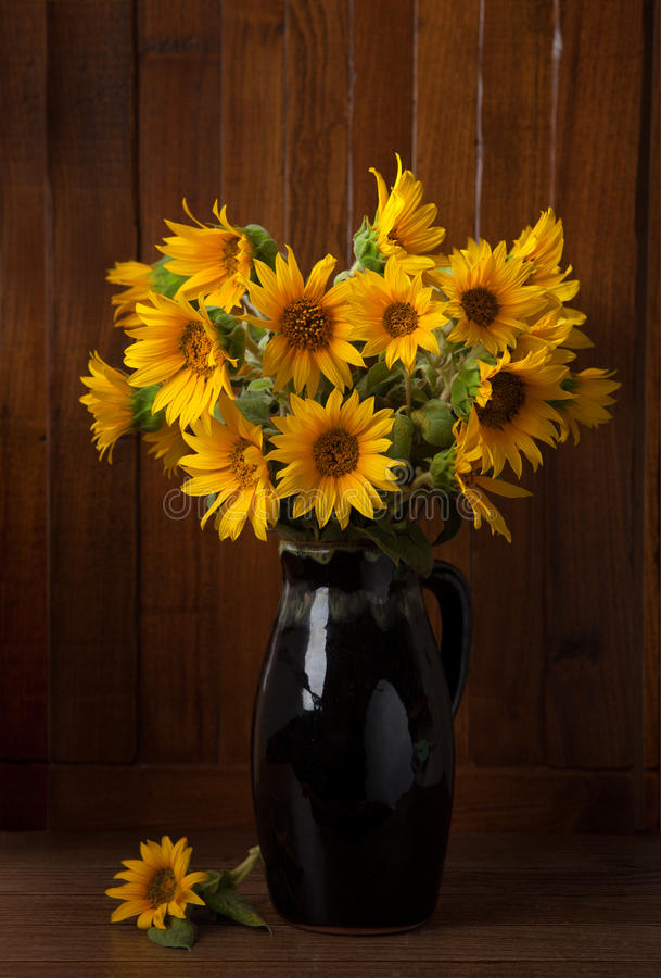 Download Bunch Of Beautiful Sunflowers Stock Photo - Image: 30315522