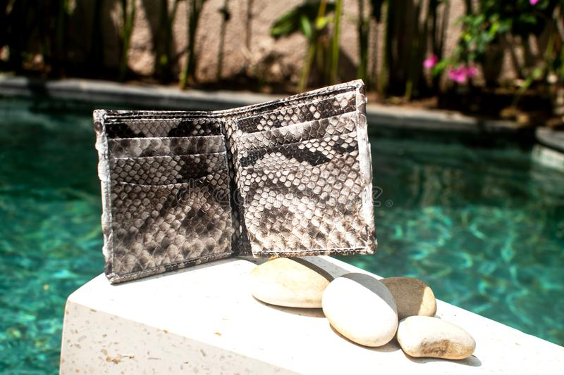 Modern accessories on pool background. Leather snakeskin python wallet. Fashionable nature python. For man and woman. inside of stock photos