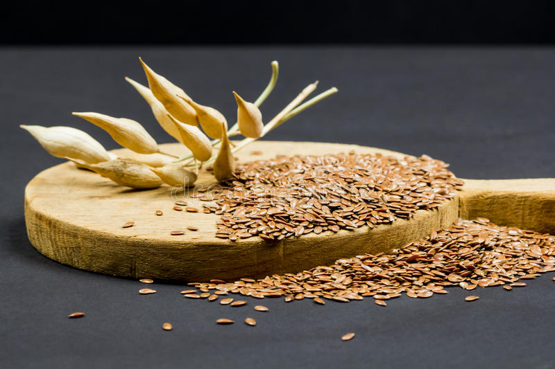 Still life composition with wooden kitchen cutting board, dried radish pods and flax seeds. On dark background royalty free stock photo