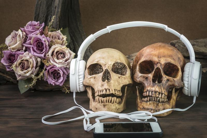 Still life with couple skull listening to music. Still life painting photography with couple skull listening to music with earphone on flower and timber stock photography