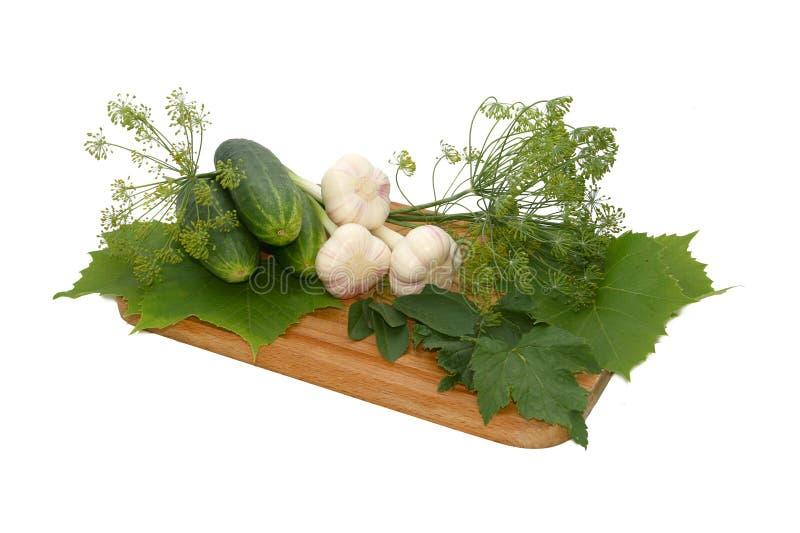 Still Life with cucumber and garlic. Still Life with cucumbers and garlic on a white background royalty free stock photos