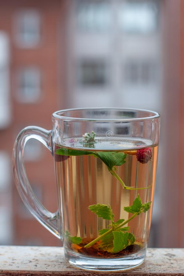 Still life cup with herbal tea. Red house with a lot of windows on the background. Strawberry leaves and berries are floating in t stock images