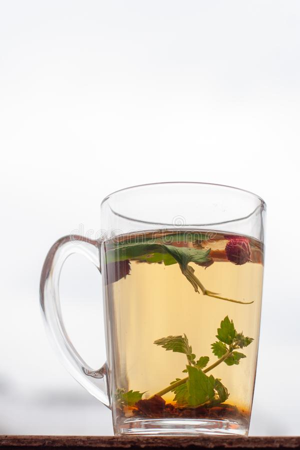 Still life cup with herbal tea. White sky on the background. Strawberry leaves and berries are floating in the cup. Vertical frame royalty free stock image