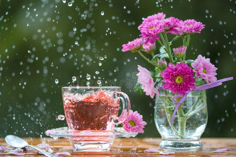 Still life with cup of tea and beautiful pink flowers under the rain royalty free stock photos