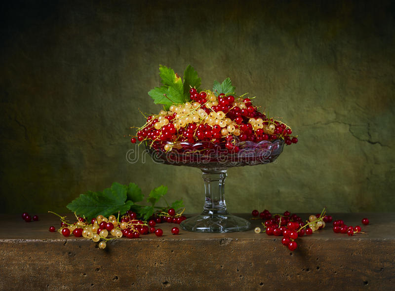 Still life with currants in a glass vase stock photography