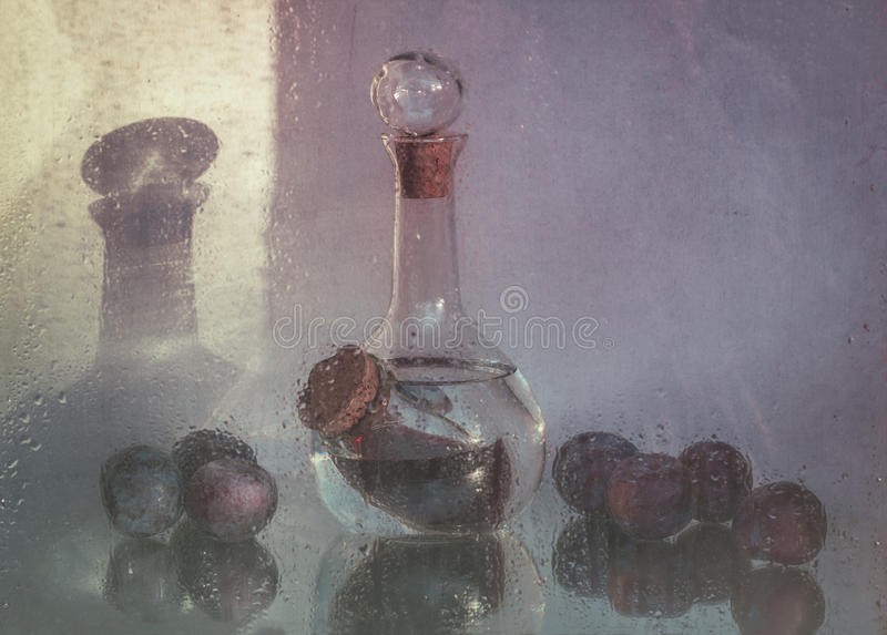 Still life with decanter and plums royalty free stock photo