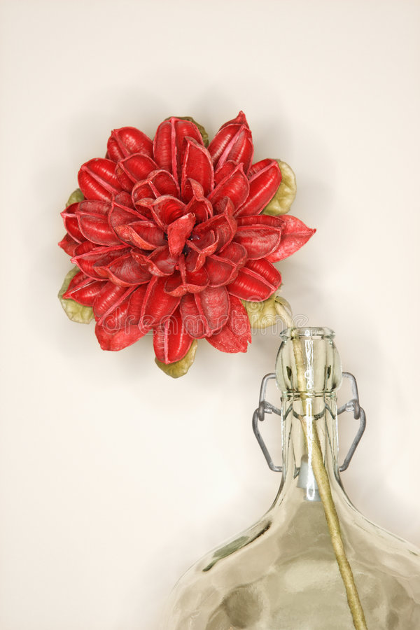 Still life of a dried flower in a glass jug. Still life shot of a dried flower in a glass jug stock image
