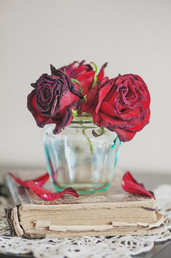 Still life with dry red roses in bottle on the vintage lace fabric and old book stock images