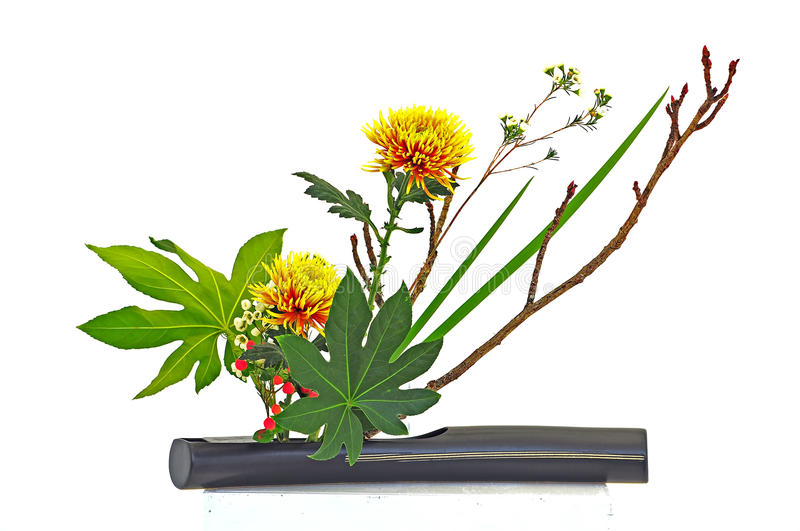 Still life with flowers royalty free stock image