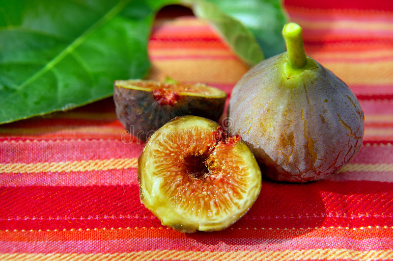 Still life with figs royalty free stock photos