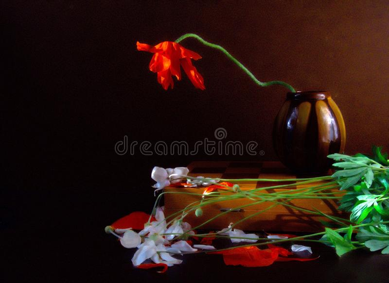 Still Life, Flower, Still Life Photography, Painting royalty free stock images