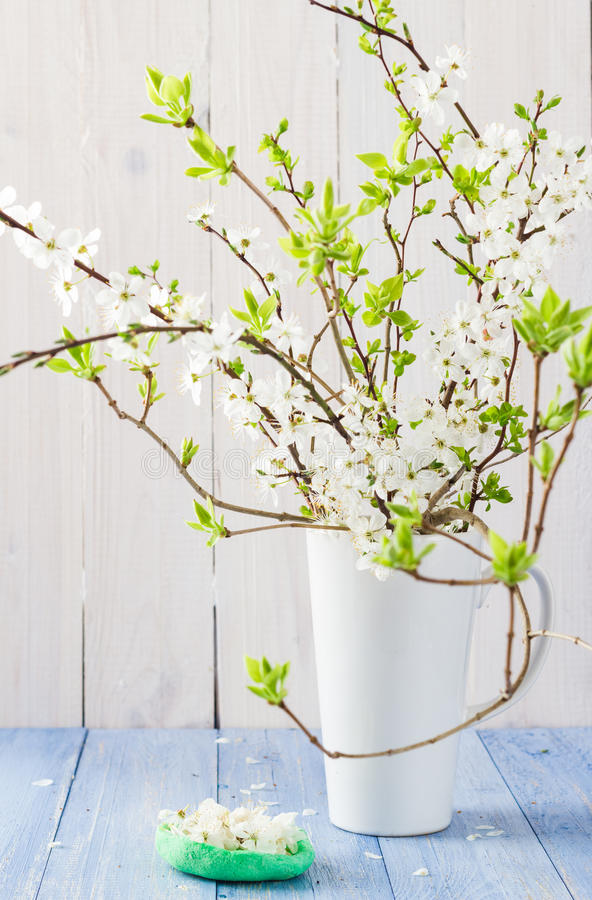 Still Life flowering branches vase royalty free stock image