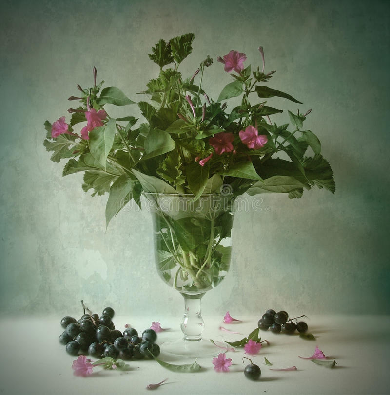 Still life with flowers stock images
