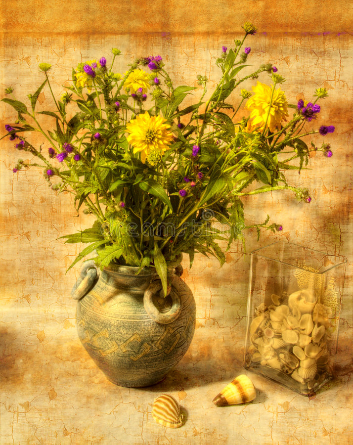 Still Life With Flowers And Shells Stock Photos