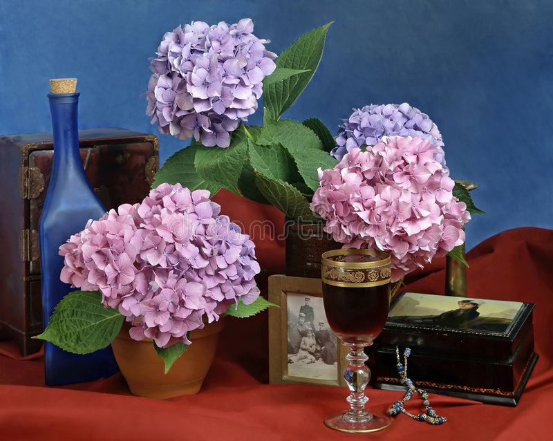 Download Still Life With Flowers And Vine Stock Photo - Image: 7361150