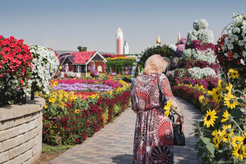 Still life fragments of the landscape design of the flower alley with an elegant girl. Travel among floral arrangements.  stock photo