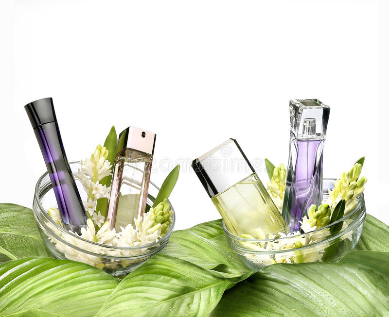Still life of fragrances. Fresh still life of fragrances and flowers on white background royalty free stock photography