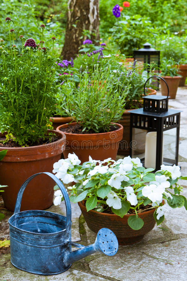 Download Still Life In A Garden Royalty Free Stock Photos - Image: 26098878