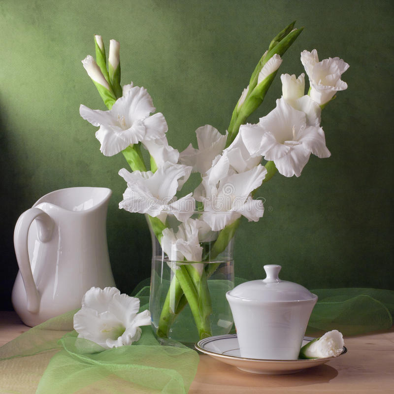 Still life with gladiolus flowers stock photography
