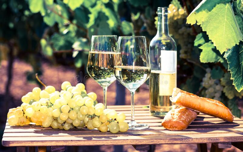 Still life with glass of White wine grapes and bread on table in field stock photo