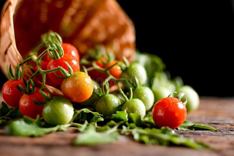 Still life group of tomato in basket on old wood royalty free stock image