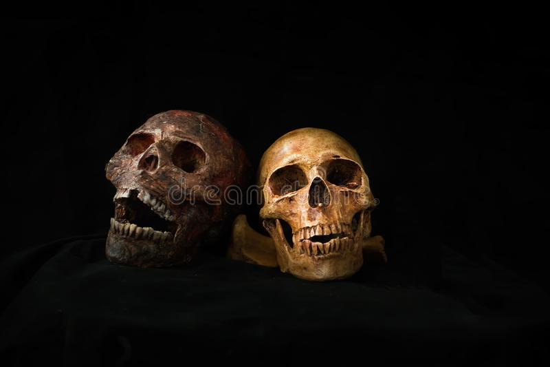 Still life of human skull and candle light,Halloween concept, Close Up skull and candle still life style. royalty free stock photo