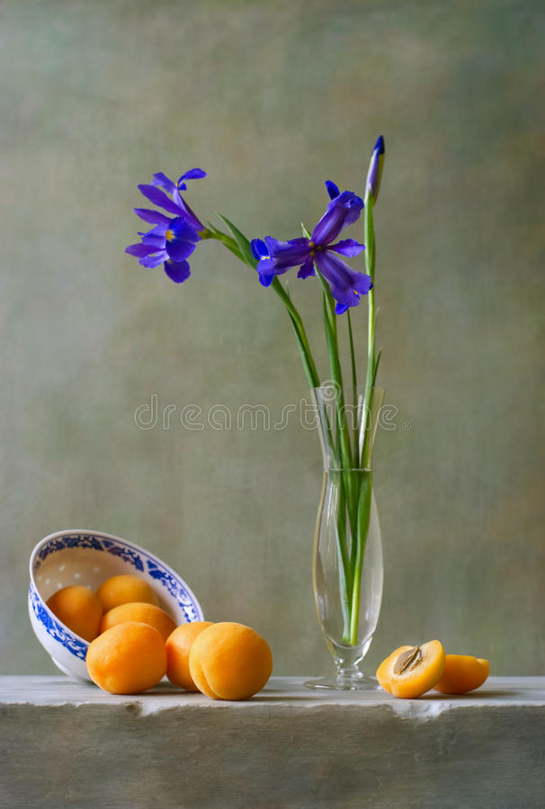 Download Still life with irises stock image. Image of beautiful - 25567863