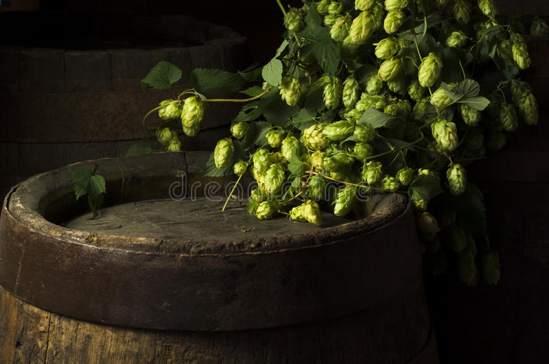 Still Life with a keg of beer. royalty free stock images