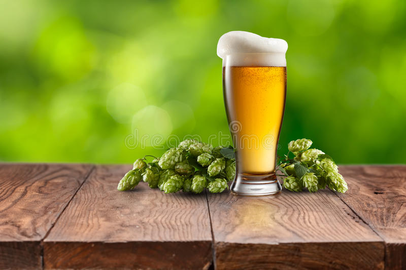 Still life with a keg of beer and hops. stock photo