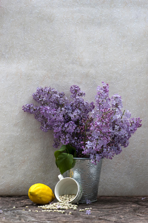 Still life with lilac royalty free stock image