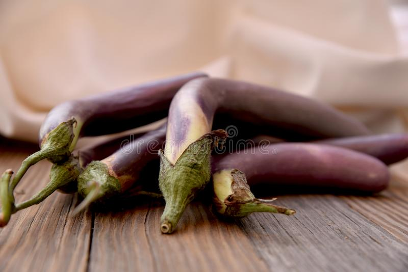 Still life with long asian eggplant royalty free stock photography