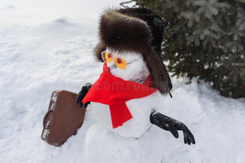 Still life of Merry Christmas and a Happy New Year. A happy snowman in a fur sable hat, red mincemeat and sunglasses with a suitca royalty free stock images