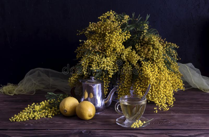 Still Life with mimosa, tea and lemons. Still life. Romantic bouquet with yellow mimosa, lemons and a cup of tea on a wooden table close-up royalty free stock photography