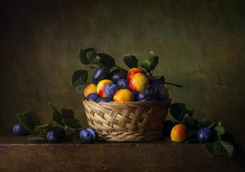 Still life with nectarines and plums royalty free stock image