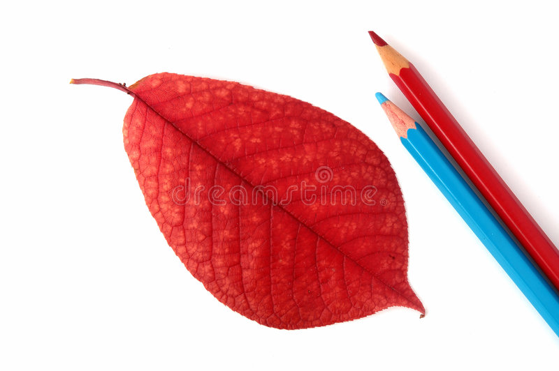 Download Still-life at office... stock image. Image of record, life - 287179