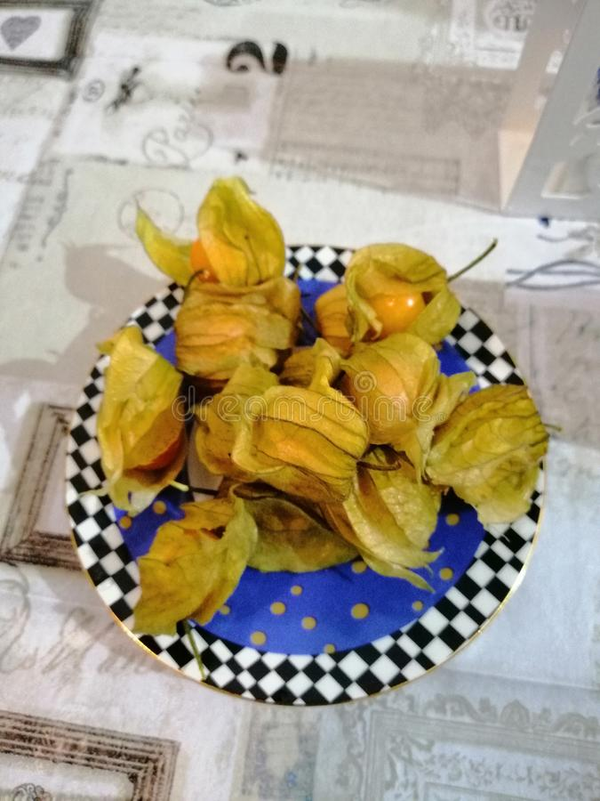 Still life plates with physalis royalty free stock images