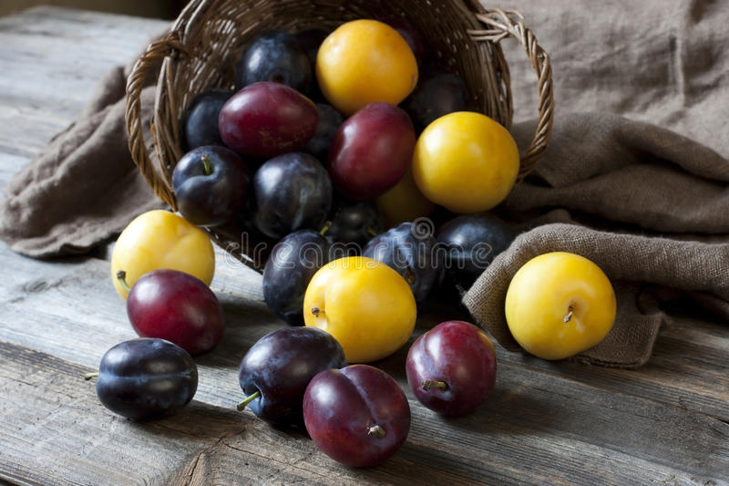Still life with plums in a basket on the table royalty free stock images