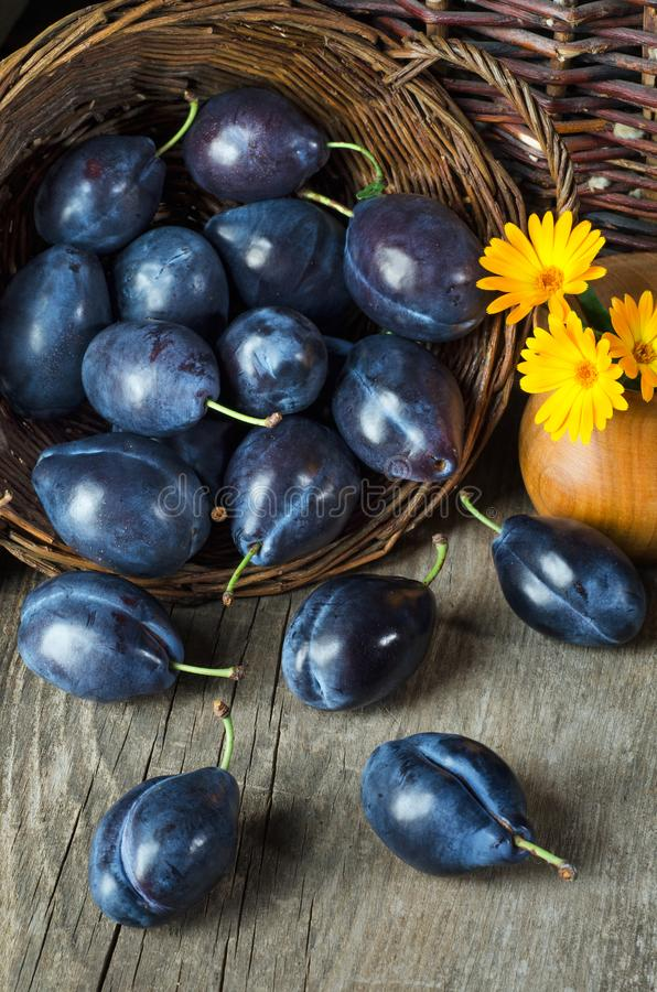 Still life with plums in a basket and yellow flowers stock photo