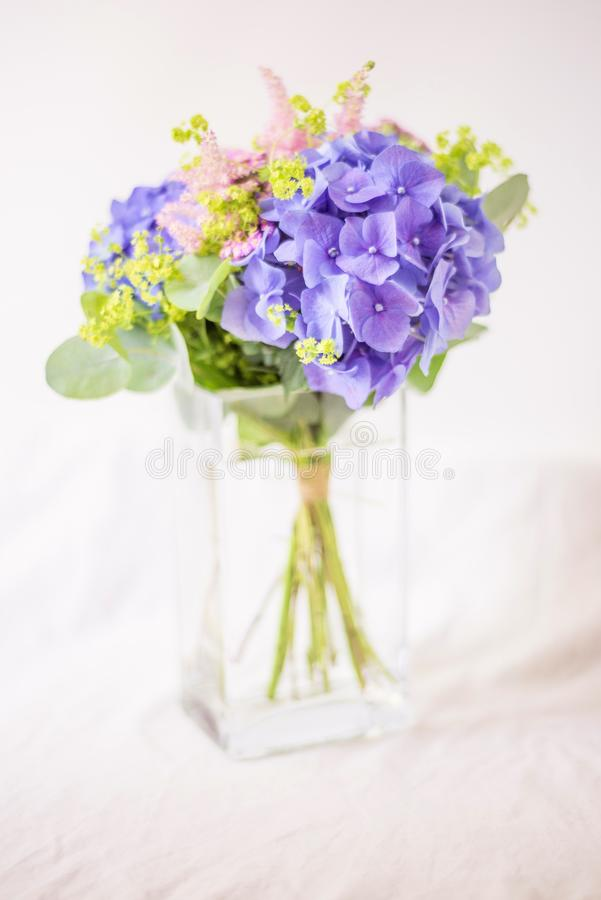 Still-life with purple Hydrangea in glass vase. Still-life with romantic purple Hydrangea in glass vase on white background royalty free stock photo