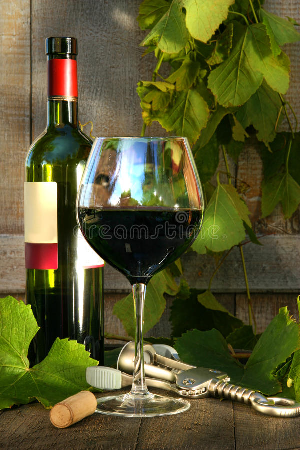 Still life with red wine bottle and glass. And grapevine leaves royalty free stock image