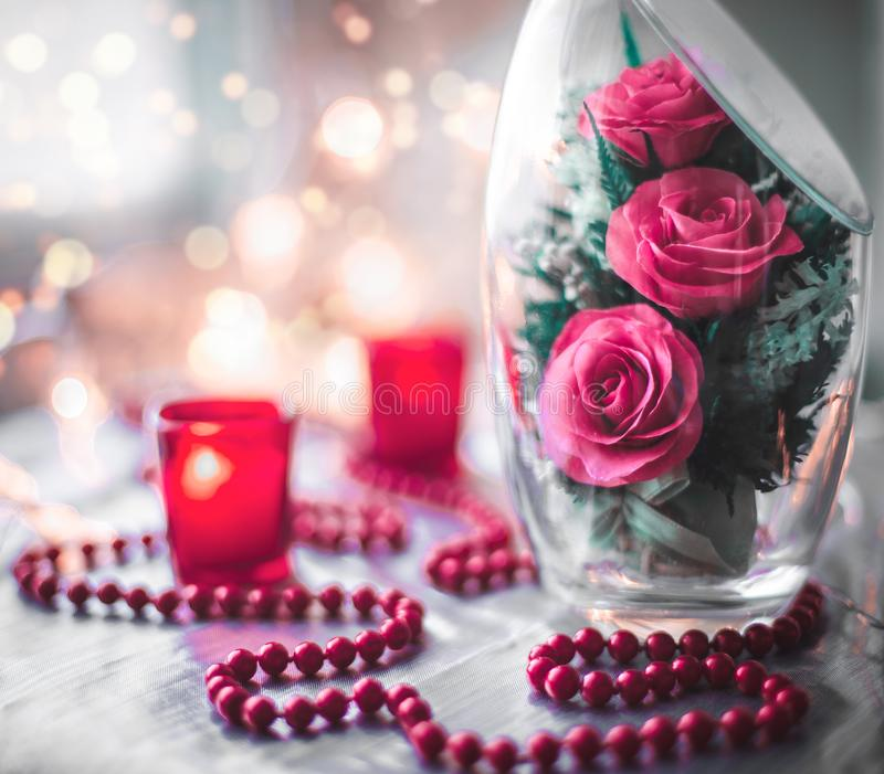 Still life of rose in glass. Still life of pink rose in glass royalty free stock photos