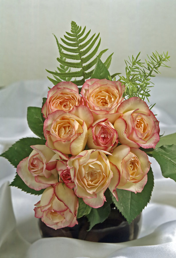Still life with roses stock images