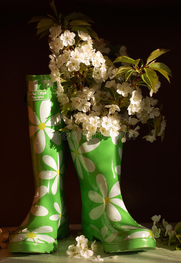 Still life with rubber knee-boots and flowers of c