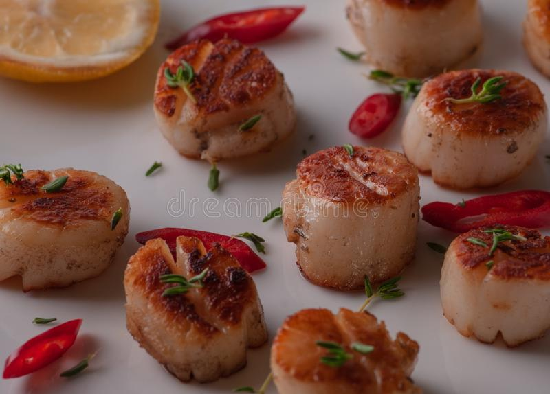 Still life sea scallops on a white plate. With lemon and red pepper. royalty free stock photography