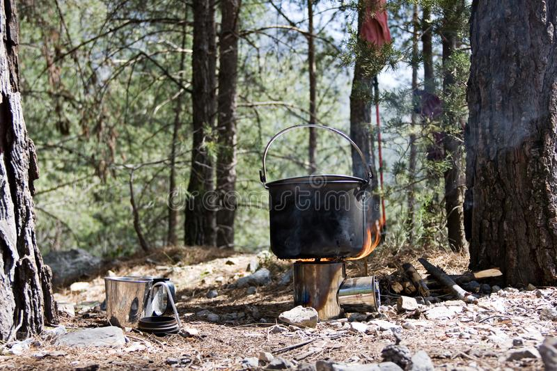 Still life. On a small glade in a coniferous forest a warm up is pot on a Backpacking Wood Burning Stove. Nearby is a cup. royalty free stock photos