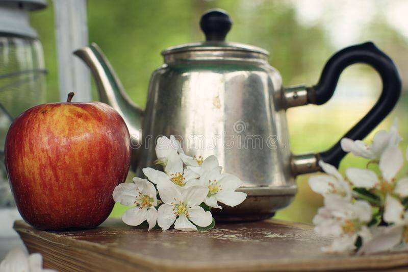 Still life in the spring apple orchard with a teapot and delicate flowers on the table.  stock photo